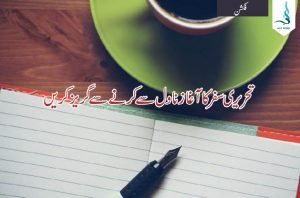 dont begin with novel