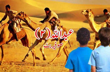 عبداللہ – دوسری اور آخری قسط